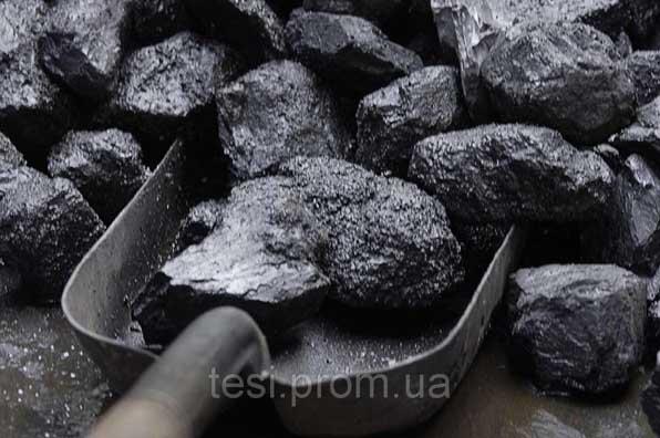 103149413 w640 h640 ugol Котел твердотопливный Metal Fach SEG   14/E (14 кВТ до 170 м2)