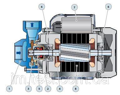 38333491 w640 h640 cid314446 pid3711532 d518e2c9 Насосная станция  Pedrollo HF PKm 60 /24CL, 0,37 кВт, 2,4 м3/ч, 40 м