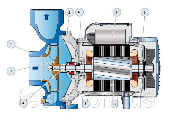 98145977 w640 h640 hf Насос, центробежный, Pedrollo HFm 5C 600 Вт, 24 м3/ч, 12.5 м